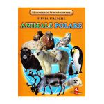 Animale polare-cartonase