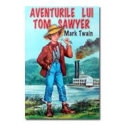 Aventurile lui Tom Sawyer-Herra