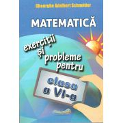 Matematica. Exercitii si probleme cls VI
