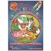 Carte de colorat si activitati practice Animale domestice
