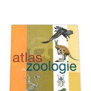 Atlas de zoologie (cartonat)-SN