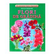 Flori de gradina-cartonase