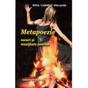 Metapoezie eseuri si manifeste poetice