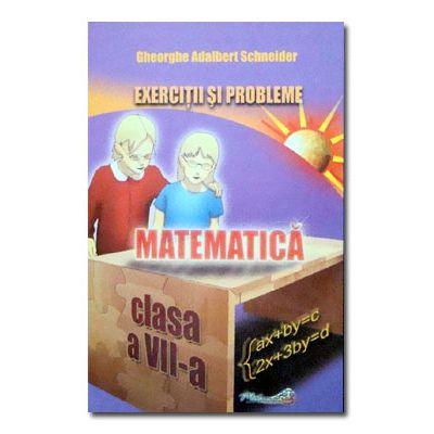 Matematica. Exercitii si probleme cls VII