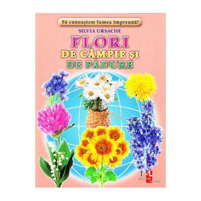 Flori de campie si de padure-cartonase