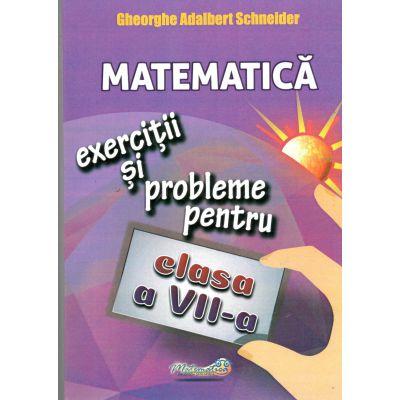 Matematica exercitii si probleme pentru clasa a-ViI-a